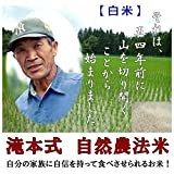 【無農薬】 【白米】 5kg 福井県産 平成29年産 新米 自然農法 米 【無農薬米】 有機栽培 米 無化学肥料