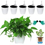 """DeELF Outlet 6 Packs 5"""" Plastic Self Watering Pots Wall Hanging Planters Wall Mounted Wicking Flower Pots for Indoor and Outd"""