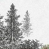 リンテックコマース ざ・ふすま紙 95cm×1.84m 2枚入 TP-44