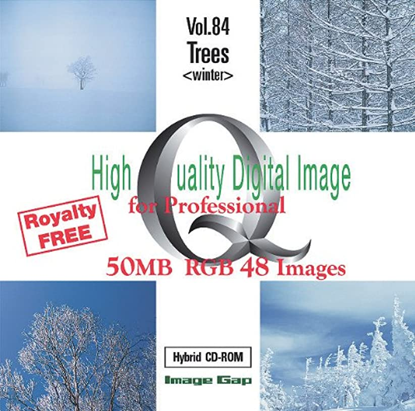 スキャン溶けた孤独なHigh Quality Digital Image for Professional Trees
