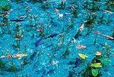 1000ピース ジグソーパズル モネの池 マイクロピース(26×38cm)