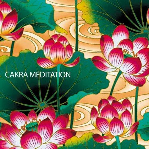 自律神経のバランスのために ~ チャクラメディテーション   Cakra Meditationの詳細を見る
