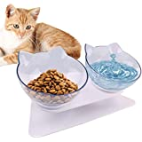 Double Cat Bowl with Raised Stand,15°Tilted Platform Cat Feeders Food and Water Bowls,Reduce Neck Pain for Cats and Small Dog