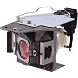 CTLAMP 5J.J7L05.001 Replacement Projector Lamp General Lamp/Bulb with Housing for BENQ W1070 / W1080ST