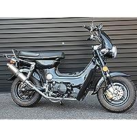 IceBear(アイスベアー)オリジナル125ccバイク クラッチ付MT4速二輪車 HL125C