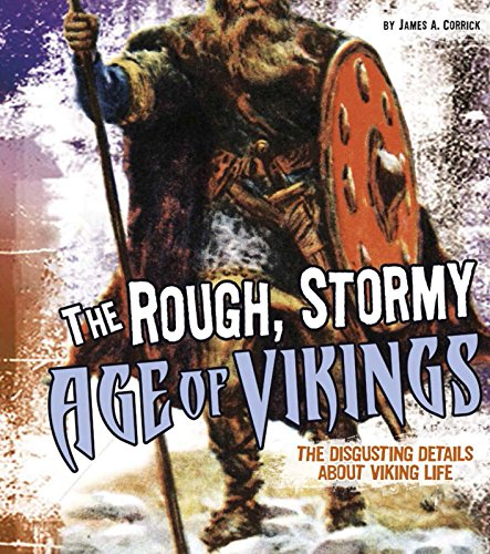 Rough Stormy Age of Vikings the