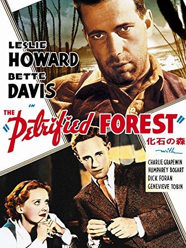 化石の森(1936) (字幕版)
