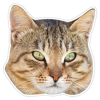 kmag 猫の顔マグネット 長毛キジトラねこ