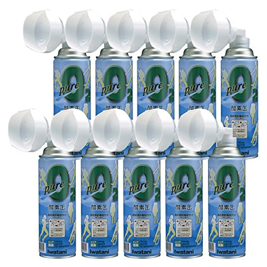 傾向があります常識理論的イワタニ(Iwatani) ピュア 酸素缶 10本セット NRS-1