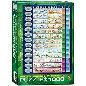 Eurographics Evolution of Life 1000Pieceパズル