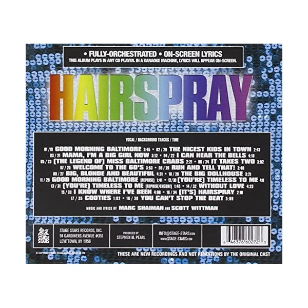 Karaoke: Hairsprayの紹介画像2