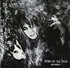 DAWN OF THE DEAD ~屍の夜明け~()