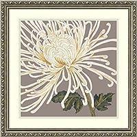 アマニアートGrande and Glorious (フローラル) by Judy Shelby シルバー DSW3910536