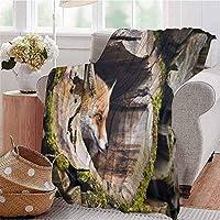 スローブランケットトゥルーフォックスヴァルプウッドログホールエキゾチック毛皮のような生き物野生動物自然動物デザインタンカウチベッド昼寝読書リクライニングチェアW60 XL80 120X150