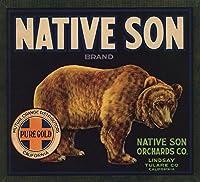 Native Sonブランド–Lindsay、カリフォルニア–Citrusクレートラベル 24 x 36 Giclee Print LANT-57666-24x36