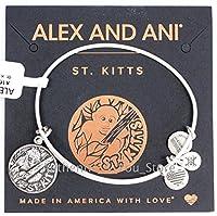 Alex and Ani St Kitts Vervet Monkeyシルバーチャームバングルブレスレット