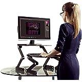 WorkEZ Standing Desk Conversion Kit. Affordable Adjustable Height Angle Laptop Sit to Stand Up Desktop Riser Converter + Nega
