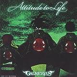 ATTITUDE TO LIFE