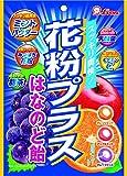ライオン菓子 花粉プラスはなのど飴 70g×6袋