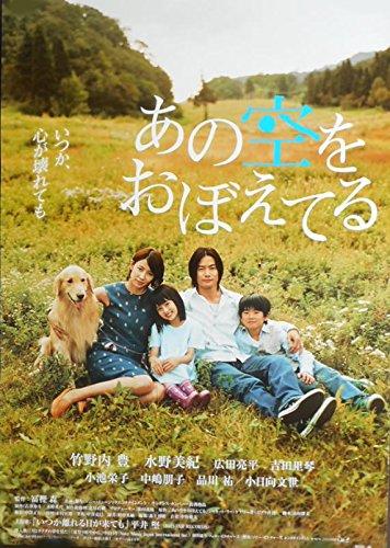 tapo2) 日本映画:劇場映画ポスター【あの空をおぼえてる】竹ノ内豊 水野美紀