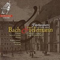 Bach & Telemann - Concertos and Cantatas (2008-11-11)