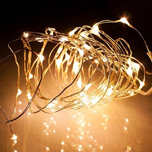 電光ホーム LEDジュエリーライト 5m50球 シャンパンゴールド kjl-5m-1gl 乾電池式 常時点灯 点滅点灯