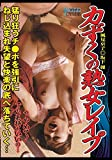 力ずくの熟女レイプ 坂下麗・風見京子 [DVD]