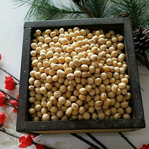 平成30年 熊本県産 大豆 9kg 業務用 品種:フクユタカ