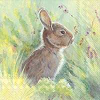 (15cm , Rabbit In The Meadow) - Ideal Home Range 20 Count Luncheon Napkins, Rabbit in the Meadow 33 cm square