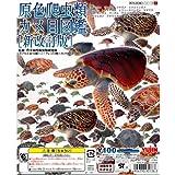原色 爬虫類 カメ目図鑑 新改訂版 全18種