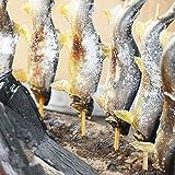 那珂川町 「炭火焼 国産 鮎塩焼き 10尾入」の商品画像