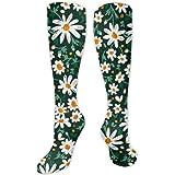 Knee High Athletic Socks Women's Beautiful Daisy Funny Novelty Socks Over The Calf Socks