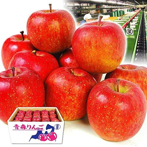 国華園 青森産 高糖度サンふじ 10kg1箱 センサー選果 りんご