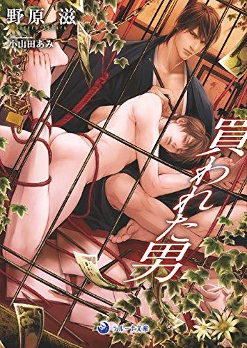 買われた男 (ラルーナ文庫)