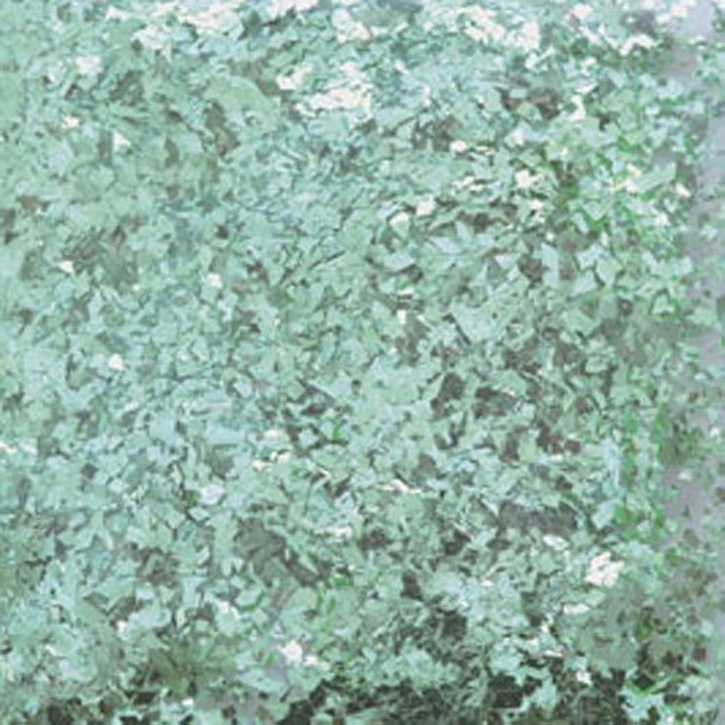証書堂々たるモードリンピカエース ネイル用パウダー 乱切シャインN #374 ライトグリーン 0.7g