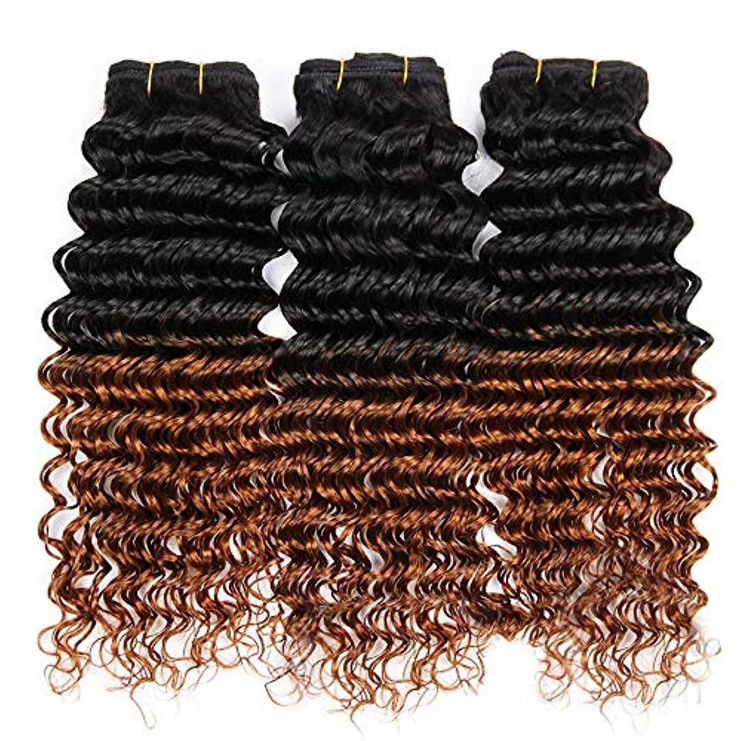 ヘロイン期待する硬いHOHYLLYA 100%人毛横糸ディープウェーブカーリーヘアバンドル - 1B / 30ブラックtoブラウン2トーンカラーヘアエクステンションロングカーリーウィッグ (色 : ブラウン, サイズ : 12 inch)