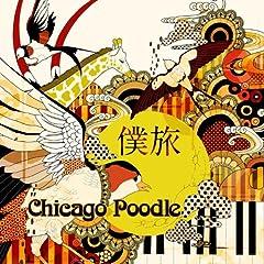 Chicago Poodle「泡沫」のジャケット画像