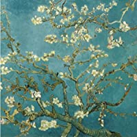 DIY PBN-paint by number famous painting Apricot blossom by Van gogh 16X20 inches Frameless. by ES Art [並行輸入品]