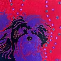 Havanese Art Print Pop ART Dog -Warhol Inspired - Colorful Dog Art - by Angela Bond [並行輸入品]
