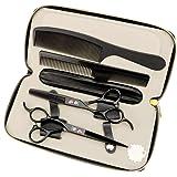 Purple Dragon 6.0 Inch Left-handed Professional Hair Scissors Straight & Thinning Barber Shears,JP440C,62HRC