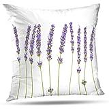KJONG Lavender Flowers White Lavender Beautiful Beauty Bloom Blue Square Decorative Pillow Case 18 x 18inch Zippered Pillow C
