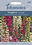 BB 英国ジョンソンシード Bees & Butterflies Foxglove Digitalis Foxy Mixed ビーズ&バタフライズ・フォクスグローブ・フォクシー・ミックス