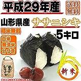 山形県産 ササニシキ 平成29年産 (5分づきに精米する, 5kg)
