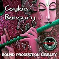 CEYLON BANSURY - huge UNIQUE Perfect WAVE/NKI Multi-Layer Samples Library on DVD or for download
