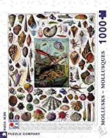 New York Puzzle Company - Vintage Images Mollusks - 1000 Piece Jigsaw Puzzle [並行輸入品]