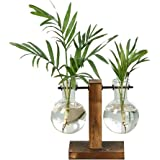 Desktop Glass Planter Bulb Vase, Planter Glass Vase with Retro Solid Wooden Stand and Metal Swivel Holder for Hydroponics Hom