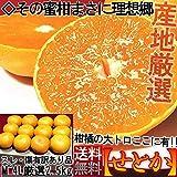 せとか 約2.5kg M~4Lサイズ 佐賀 愛媛 愛知 産地厳選 訳あり 簡易包装 柑橘類 タンゴール種