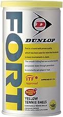 DUNLOP(ダンロップ) 硬式テニス ボール SAFETY TOP FORT [ フォート缶 ]