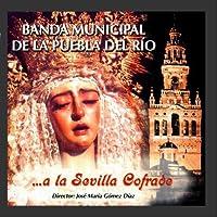 ...A La Sevilla Cofrade