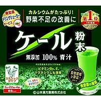山本漢方 ケール粉末無添加100%青汁 ドリンクシェーカー付 3g×88包 × 3個セット